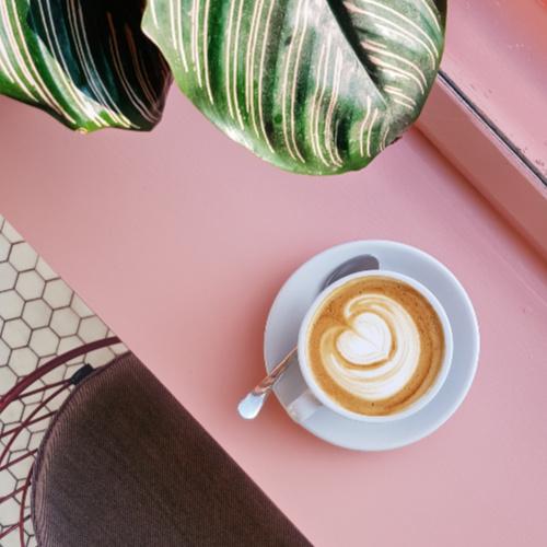 BI-coffee-pink-500 x 500